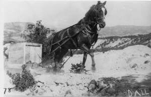 Horse_and_Sled_1916