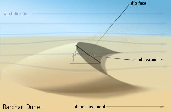Barchan Dunes - Geologic Wonders - Great Sand Dunes ...