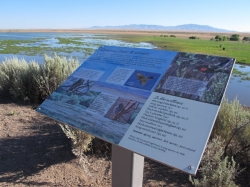 "An information kiosk tells visitors about Blacks Creek Bird Reserve, an ""Oasis in the Desert."""