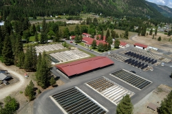 Leavenworth National Fish Hatchery