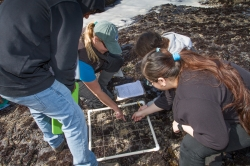 LiMPETS staff teaches high school students.