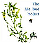 Melibee Project