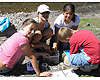 Students learn about stream ecology and macro-invertebrates